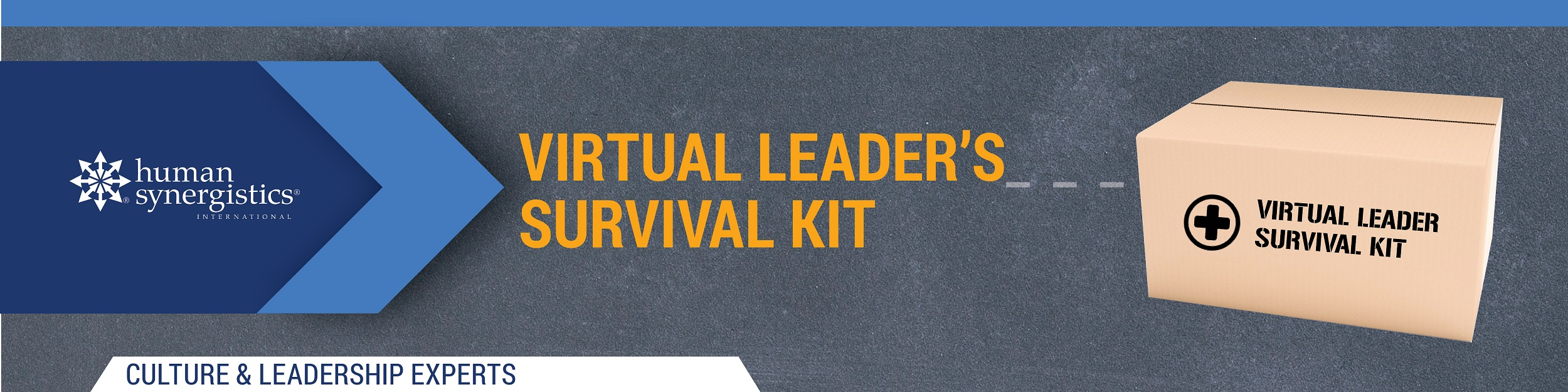 Virtual Leader Survival Kit website banner sm